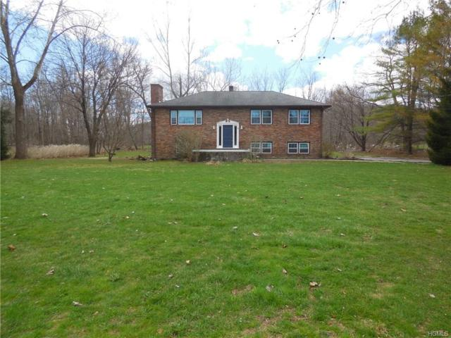 86 Ten Mile River Road, Dover Plains, NY 12522 (MLS #4817258) :: William Raveis Legends Realty Group