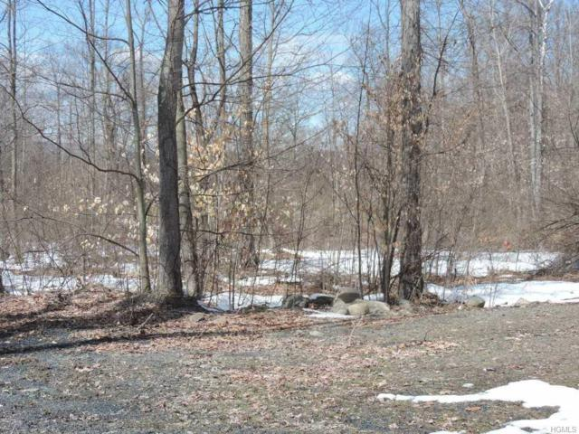 34 Emily (Lot 14) Drive, Wallkill, NY 12589 (MLS #4817451) :: William Raveis Legends Realty Group