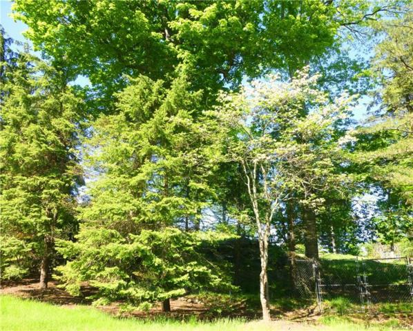 16 Carey Drive, Bedford, NY 10506 (MLS #4817472) :: Mark Boyland Real Estate Team