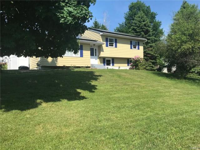 81 Capital Drive, Washingtonville, NY 10992 (MLS #4817669) :: Mark Boyland Real Estate Team