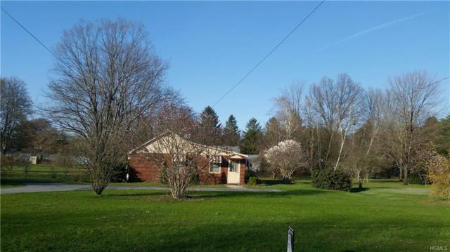 20 Skinners, Port Jervis, NY 12771 (MLS #4817897) :: Stevens Realty Group