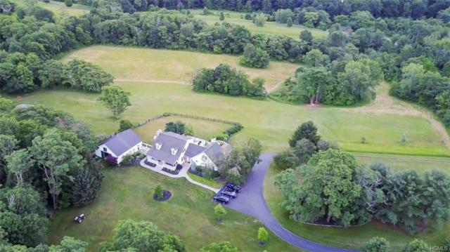 300 Allen Road, Salt Point, NY 12578 (MLS #4817977) :: William Raveis Legends Realty Group