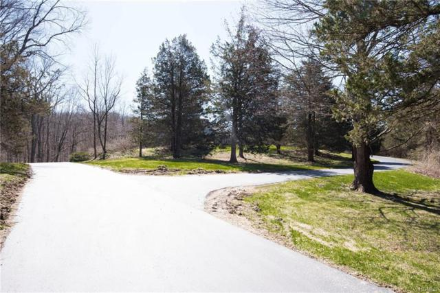 1196 Salt Point Turnpike, Pleasant Valley, NY 12569 (MLS #4818014) :: Stevens Realty Group