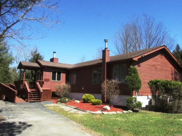 53 Lake View Drive, Swan Lake, NY 12783 (MLS #4818181) :: Stevens Realty Group
