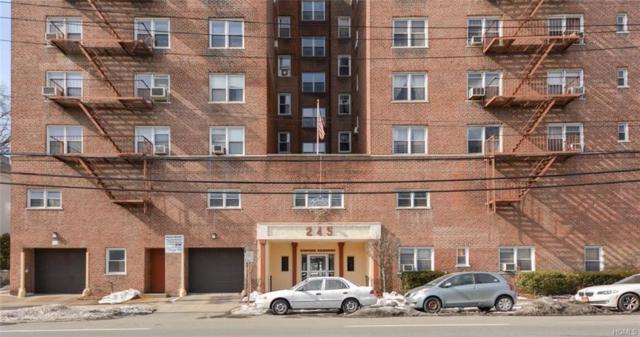 245 Bronx River Road 6F, Yonkers, NY 10704 (MLS #4818231) :: William Raveis Baer & McIntosh