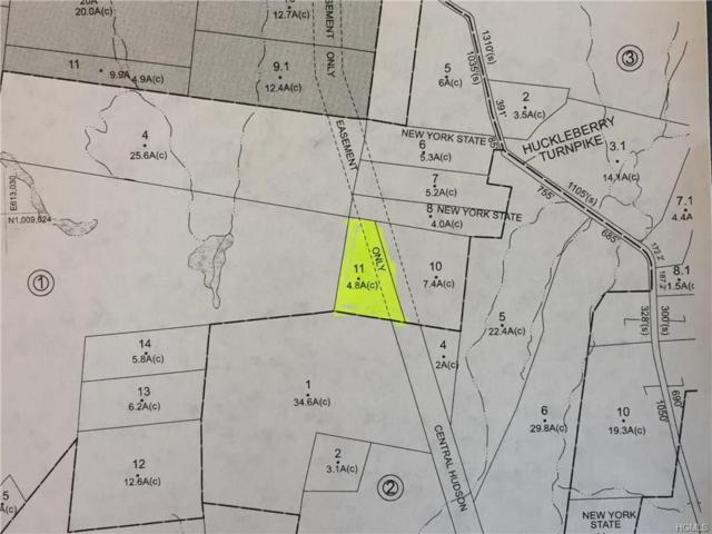 TBD Huckleberry Turnpike, Plattekill, NY 12568 (MLS #4818314) :: William Raveis Legends Realty Group