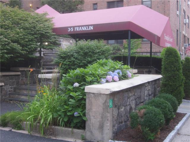 3 Franklin Avenue 5L, White Plains, NY 10601 (MLS #4818470) :: William Raveis Legends Realty Group