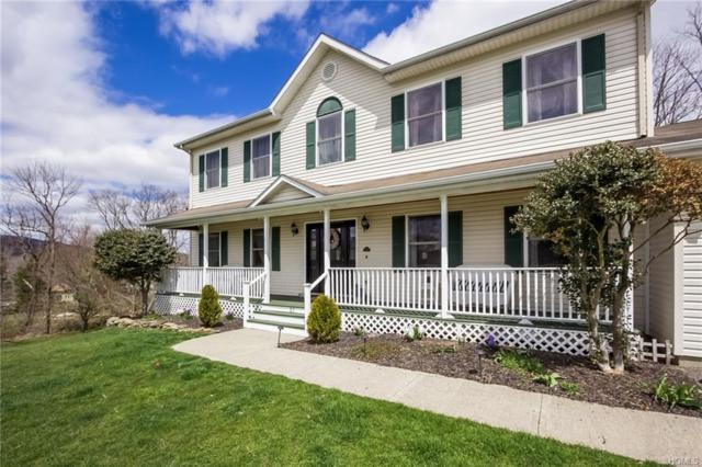 27 Ohandley Drive, Amenia, NY 12501 (MLS #4818612) :: Michael Edmond Team at Keller Williams NY Realty