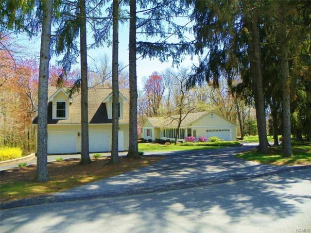 117 Lyndon Road, Fishkill, NY 12524 (MLS #4818642) :: Stevens Realty Group