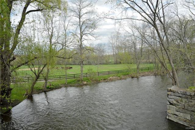 460-3 Silvernails Road, Pine Plains, NY 12567 (MLS #4818663) :: Stevens Realty Group