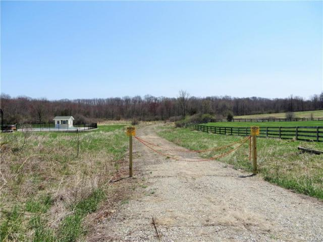 Cty Hwy 4, Campbell Hall, NY 10916 (MLS #4819253) :: Stevens Realty Group