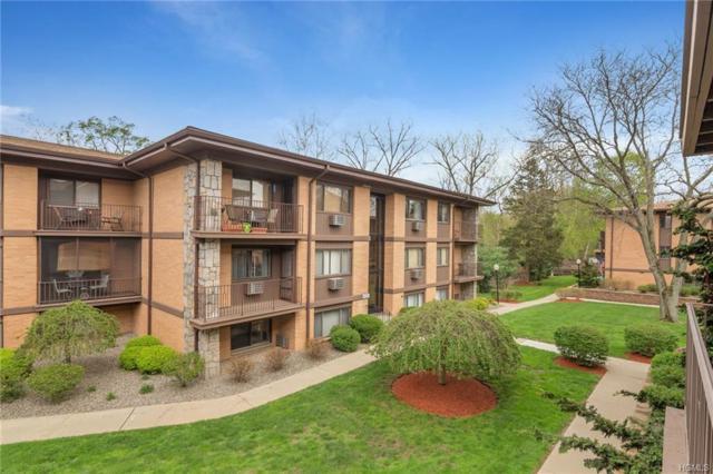 10 Oakwood Terrace #85, New Windsor, NY 12553 (MLS #4819370) :: William Raveis Legends Realty Group