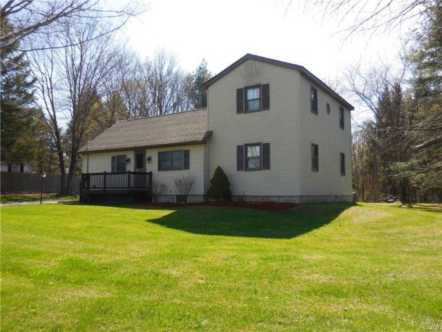 322 S State Route 32, New Paltz, NY 12561 (MLS #4819585) :: William Raveis Legends Realty Group
