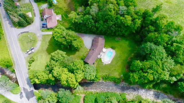 15 Old County Route 149, Livingston Manor, NY 12758 (MLS #4819754) :: Stevens Realty Group