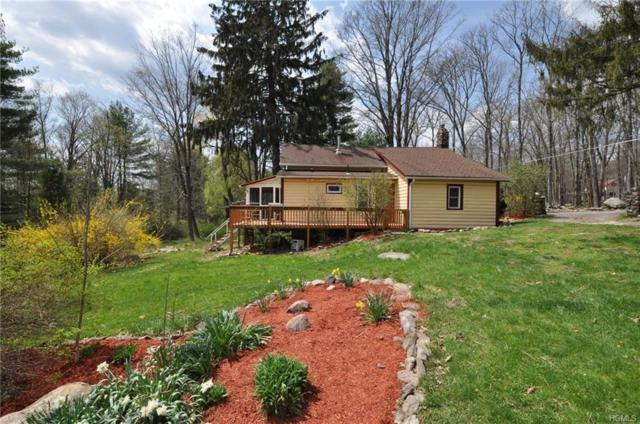450 Upper Mountain Road, Pine Bush, NY 12566 (MLS #4820059) :: William Raveis Legends Realty Group