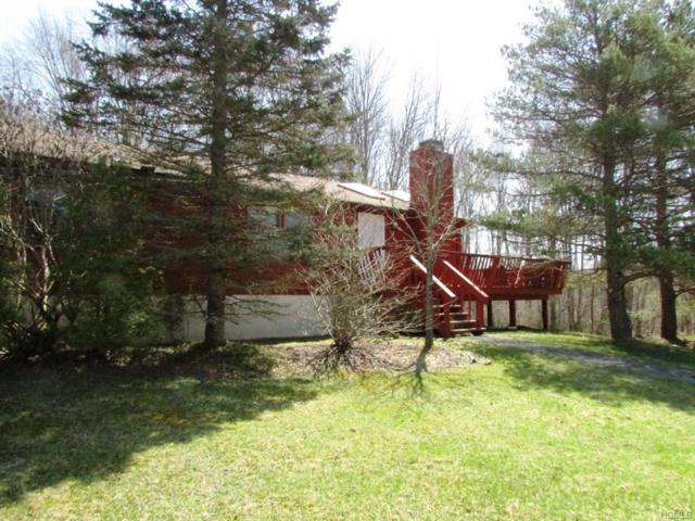 15 Post Road, Swan Lake, NY 12783 (MLS #4820437) :: Mark Boyland Real Estate Team