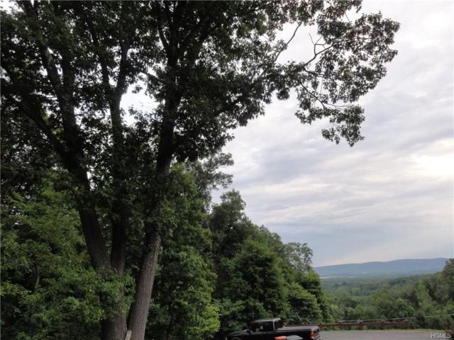 Forest View Drive, Wappingers Falls, NY 12590 (MLS #4820603) :: Stevens Realty Group