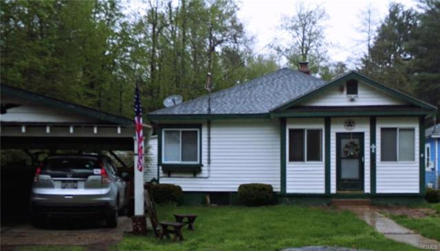 26 Mongaup Road, Monticello, NY 12701 (MLS #4820679) :: Stevens Realty Group