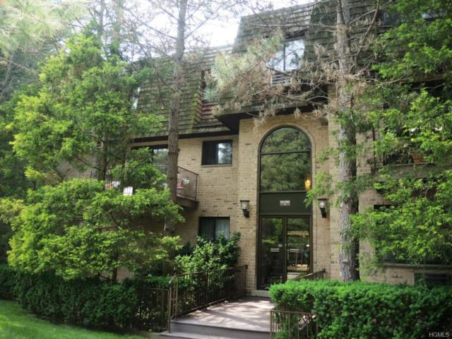 500 Central Park Avenue #214, Scarsdale, NY 10583 (MLS #4820785) :: Mark Boyland Real Estate Team