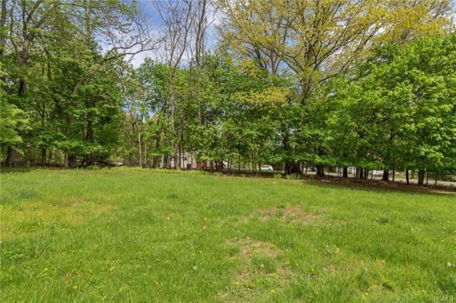 2 Lazaroff Lane, New Windsor, NY 12553 (MLS #4820858) :: Stevens Realty Group