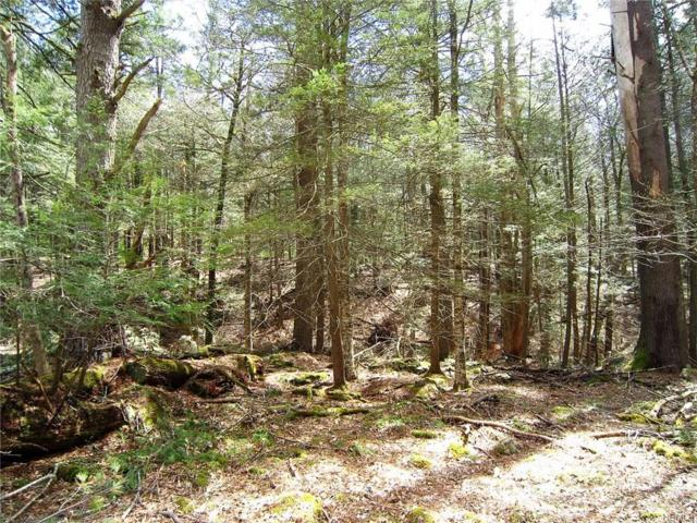 Mill Road, Forestburgh, NY 12777 (MLS #4820860) :: Stevens Realty Group