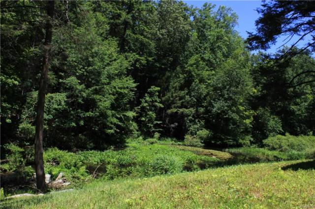 Lower Trinity Pass Road, Pound Ridge, NY 10576 (MLS #4820983) :: Mark Boyland Real Estate Team