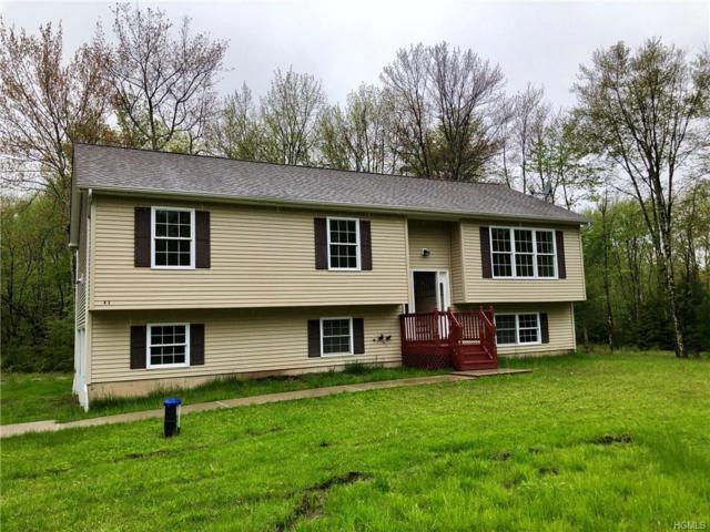 43 Callahans Road, Wurtsboro, NY 12790 (MLS #4821189) :: Stevens Realty Group