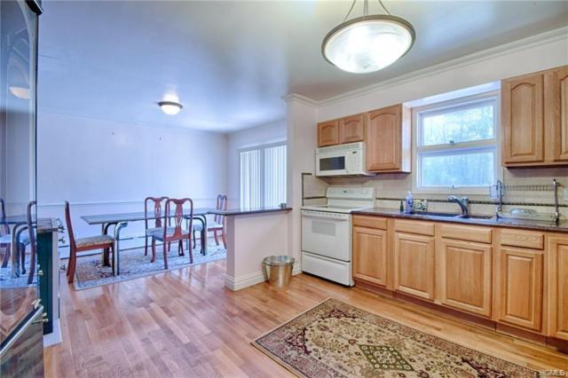 264 Katrina Falls Road, Rock Hill, NY 12775 (MLS #4821222) :: Stevens Realty Group