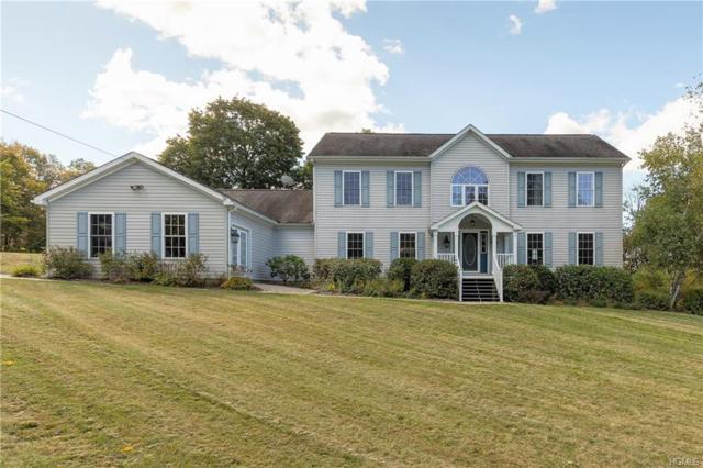 28 Brown Road, Pleasant Valley, NY 12569 (MLS #4821234) :: Stevens Realty Group