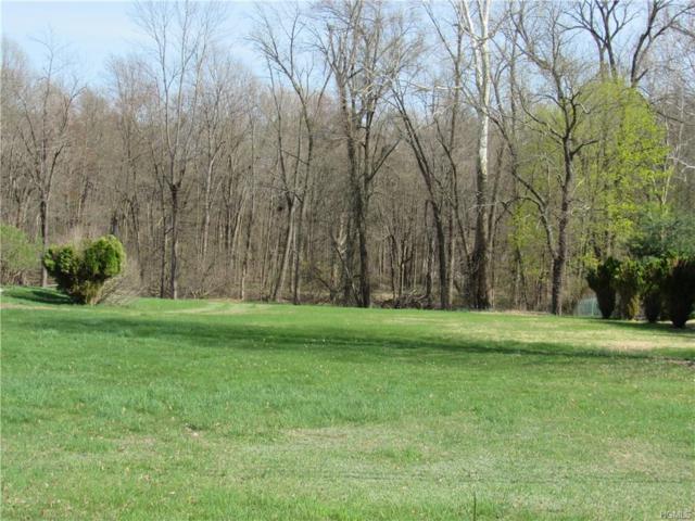 68 Pye Lane, Wappingers Falls, NY 12590 (MLS #4821264) :: Stevens Realty Group