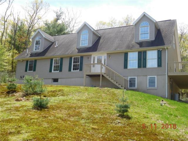 511 Peenpack Trail, Huguenot, NY 12780 (MLS #4821348) :: Stevens Realty Group
