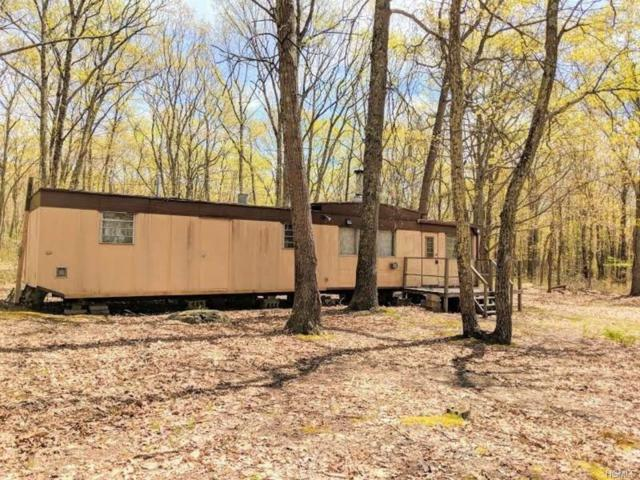 150 Kalin Weber Road, Glen Spey, NY 12737 (MLS #4821390) :: Stevens Realty Group