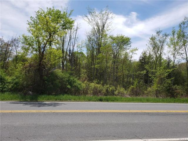 2236 Route 44 55, Gardiner, NY 12525 (MLS #4821462) :: Stevens Realty Group