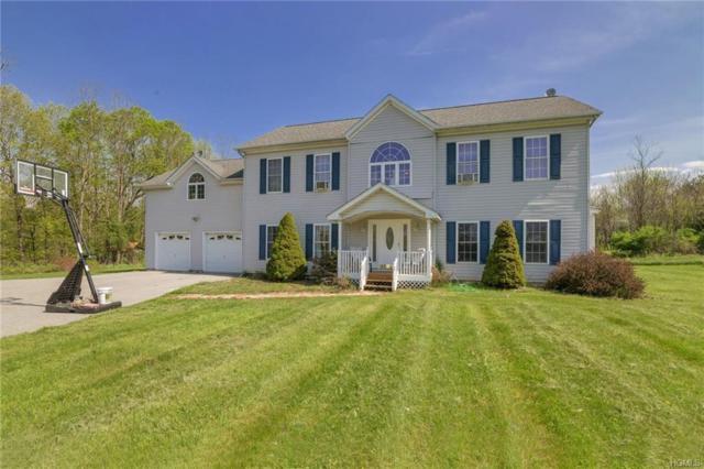 109 Grist Mill Lane, Stanfordville, NY 12581 (MLS #4821471) :: Stevens Realty Group