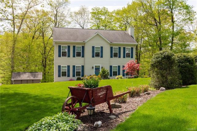 23 Swain Drive, Pleasant Valley, NY 12569 (MLS #4821619) :: Stevens Realty Group