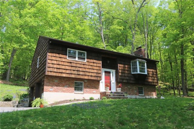374 Drewville Road, Carmel, NY 10512 (MLS #4821629) :: Mark Boyland Real Estate Team