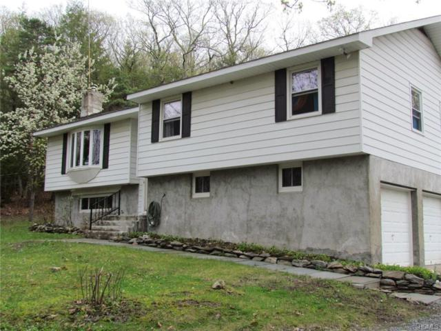 607 Hall Hill Road, Call Listing Agent, NY 12502 (MLS #4821666) :: Michael Edmond Team at Keller Williams NY Realty