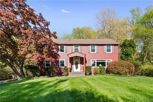 38 Tanya Lane, Mahopac, NY 10541 (MLS #4821749) :: Mark Boyland Real Estate Team