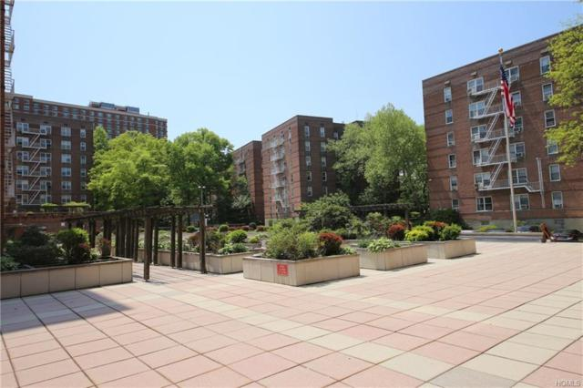 491 Riverdale Avenue 5G, Yonkers, NY 10705 (MLS #4822026) :: William Raveis Legends Realty Group