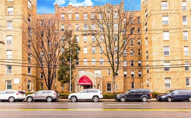 219 Bronx River Road 1F, Yonkers, NY 10704 (MLS #4822353) :: William Raveis Legends Realty Group