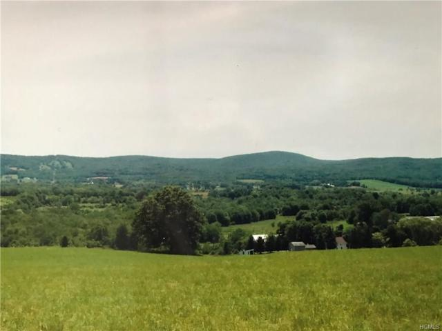 9 Manno Farm Road, Warwick, NY 10990 (MLS #4822361) :: Stevens Realty Group
