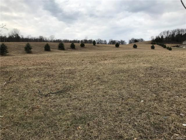 7 Manno Farm Road, Warwick, NY 10990 (MLS #4822364) :: Stevens Realty Group