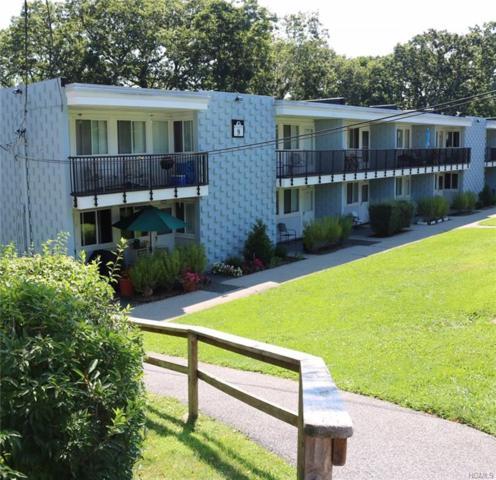 9 Wyndover Woods #21, White Plains, NY 10603 (MLS #4822457) :: Mark Boyland Real Estate Team