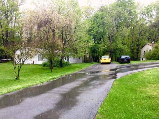 12 Carmine Lane, Highland Lake, NY 12743 (MLS #4822540) :: Stevens Realty Group
