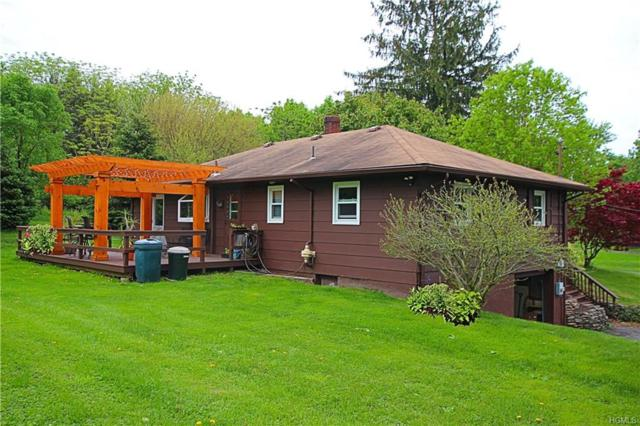 234 Perkinsville Road, Highland, NY 12528 (MLS #4822600) :: William Raveis Legends Realty Group