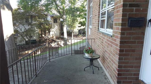 226 Kearsing Parkway, Monsey, NY 10952 (MLS #4822694) :: Mark Seiden Real Estate Team