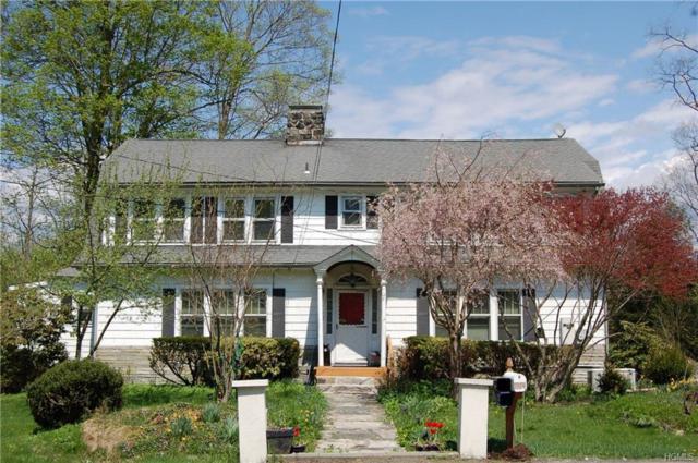 4041 Route 52, Holmes, NY 12531 (MLS #4822761) :: Mark Boyland Real Estate Team