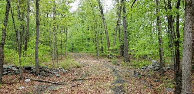 181 Basel Road, Pine Bush, NY 12566 (MLS #4822814) :: William Raveis Legends Realty Group