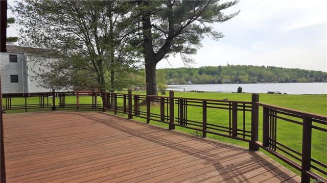 1013 Central Avenue, White Lake, NY 12786 (MLS #4822873) :: William Raveis Legends Realty Group