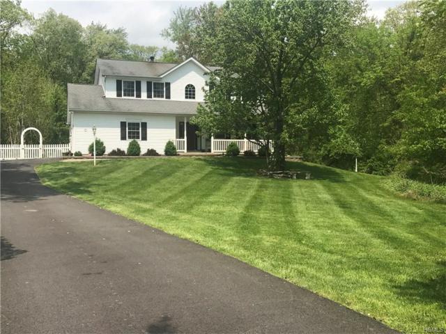 17 Toms Lane, Newburgh, NY 12550 (MLS #4822881) :: Stevens Realty Group